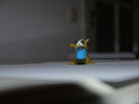 Kortneuseekhoorn