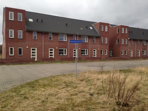 Helmbloemwal Delftlanden