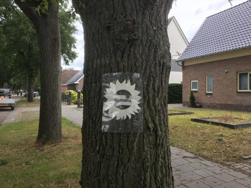 Nieuw-Dordrecht Klazienaveensestraat Ramona Knegt