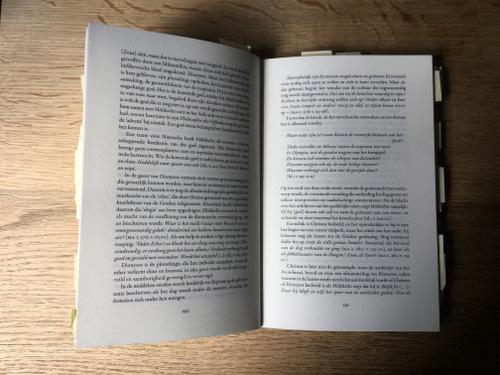 Hölderlin. Biografie van een mysterieuze dichter