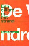 Olifantophetstrand_2